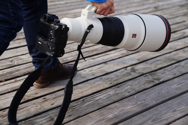 Two new FE super telephoto lenses from Sony, the 600mm f4 GM and 200-600mm G OSS