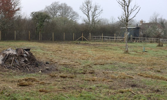 We visited the centre on Friday 22nd February - it was a very bleak day, but we were shown were the new orchard was to be planted and the new hive situated