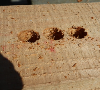 Entrance/Exit holes for the bees