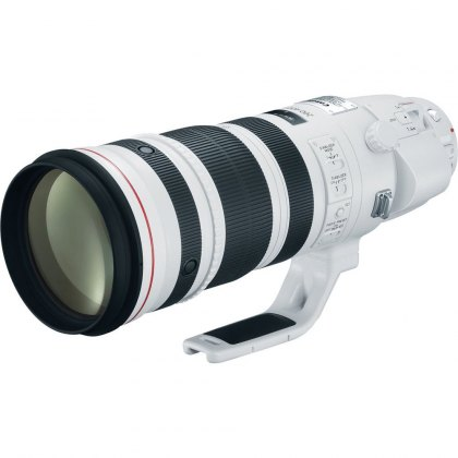 Canon EF 200-400mm f/4L IS USM, Extender 1.4x
