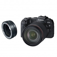 Canon EOS RP, 24-105 with Adapter EF-EOS R