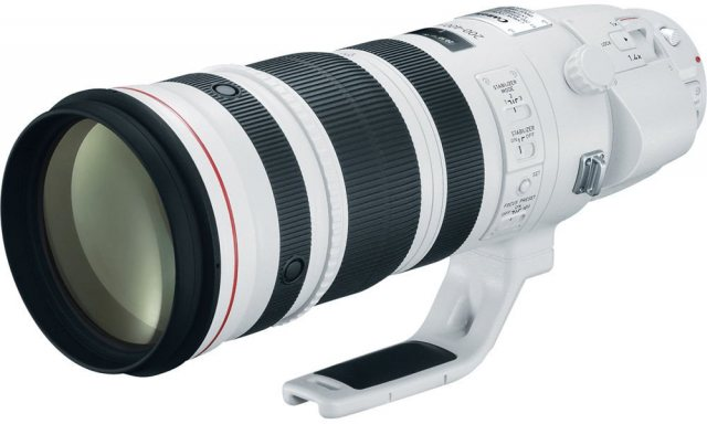 Canon Canon EF 200-400mm f/4L IS USM, Extender 1.4x