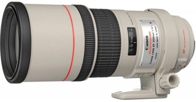 Canon Canon EF 300mm f4 L IS USM