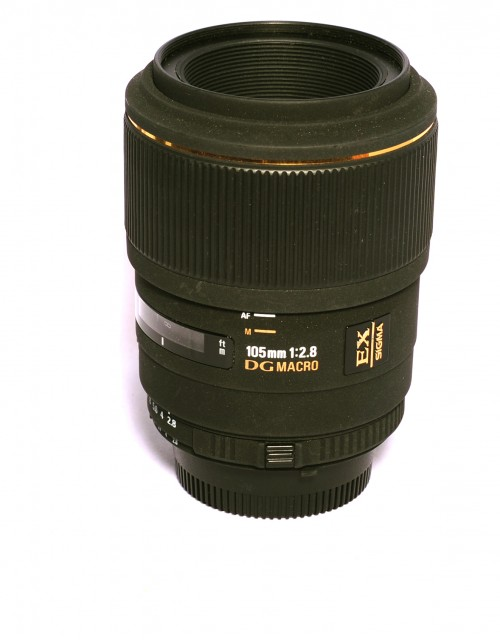 Sigma Used Sigma 105mm f2.8 DG Macro for Nikon AF